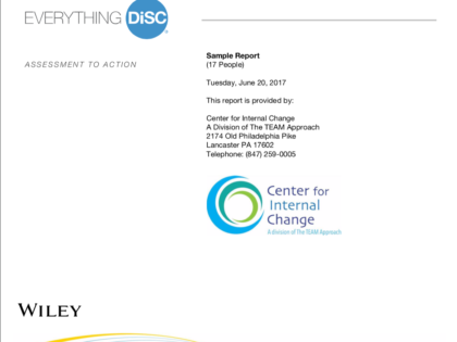 Everything DiSC® Group Culture Report